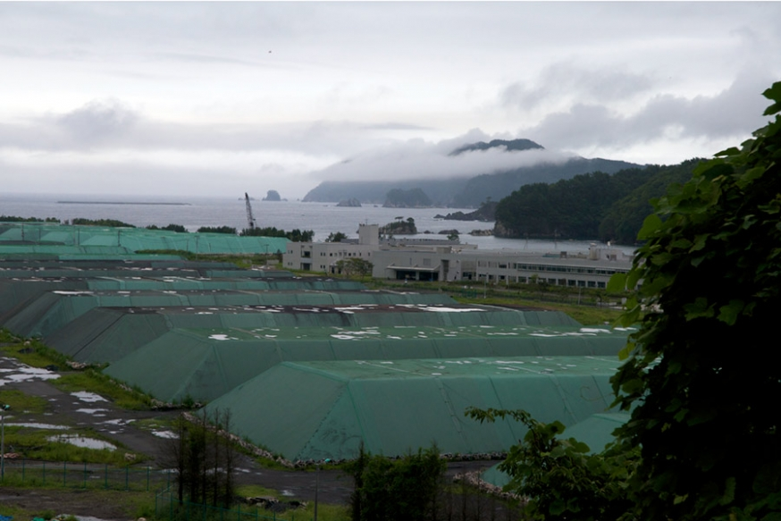 http://gianni-giosue.com/files/gimgs/th-15_Walk_Tohoku_Tsunami_-20-copy.jpg